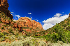 Zion National Park in Utah, USA. Stock Photography