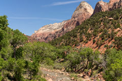 Zion National Park, Utah Royalty Free Stock Photography