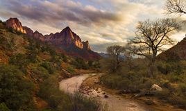 Zion National Park, Watchman. Watchman rock is an iconic place in Zion National Park, Utah Stock Photography