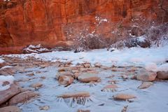 Zion National Park Winter Scene Royalty Free Stock Image
