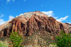 Zion National Park XI Royalty Free Stock Photos