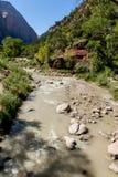 Zion nationalpark Arkivfoto