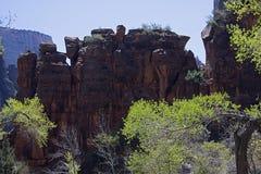 Zion Nationalpark. Stockfotografie