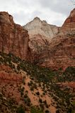 Zion Nationalpark Lizenzfreies Stockbild