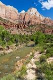 Zion nationalpark Fotografering för Bildbyråer
