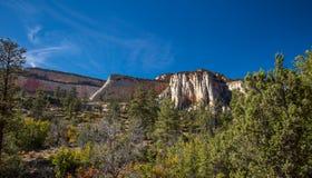 Zion nationalpark Arkivbild
