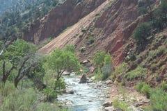 Zion Nationalpark in Utah Stockfotografie