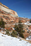 Zion nationalpark, Utah, USA Royaltyfria Foton