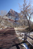 Zion nationalpark, Utah, USA Fotografering för Bildbyråer