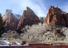Zion nationalpark, Utah, USA Arkivbild