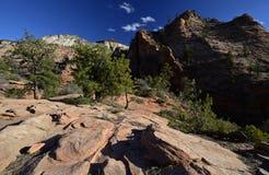 Zion Nationalpark, Utah, USA Stockfotografie