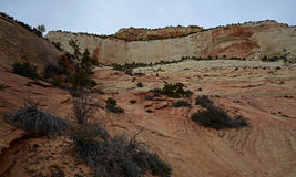 Zion Nationalpark, Utah, USA Lizenzfreie Stockfotografie
