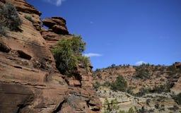 Zion Nationalpark, Utah, USA Lizenzfreies Stockfoto