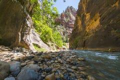 Zion park narodowy, Utah, usa 06/02/16: zion przesmyk w Zion narodzie Obrazy Stock
