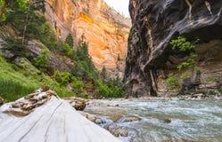 Zion park narodowy, Utah, usa 06/02/16: zion przesmyk w Zion narodzie Zdjęcie Royalty Free