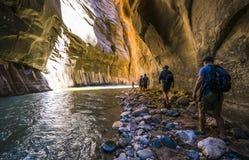 Zion park narodowy, Utah, usa 06/02/16: zion przesmyk w Zion narodzie Zdjęcia Stock