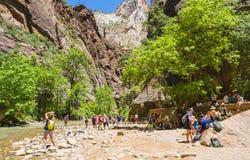 Zion park narodowy, Utah, usa 06/02/16: zion przesmyk w Zion narodzie Obraz Royalty Free