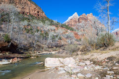 Zion park Stock Photos