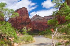 Zion Park in Springtime. Zion National Park in Utah offers spectacular views of mountains and rock formations. Beautiful in Winter. Near Hurricane royalty free stock images