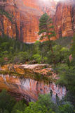 zion parku narodowego Obrazy Royalty Free