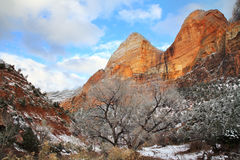 Zion Peaks In Winter Stock Photography