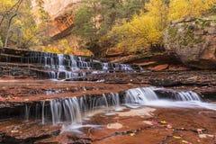Zion Red Waterfalls Stockbilder