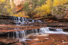 Zion Red Waterfalls. Red Waterfalls, also called Subway Falls, just downstream from the Subway on the Left Fork of North Creek in Zion National Park, Utah Stock Images