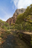 Zion River Royalty Free Stock Photography