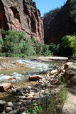 Zion River. Zion Canyon National Park River royalty free stock photo