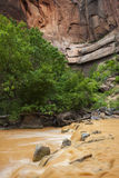 Zion River Stock Images