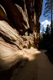 Zion rock formations Royalty Free Stock Photography