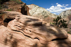 Zion rock formations Royalty Free Stock Photo