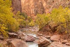 Zion Scenic Landscape Stock Images