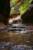 Zion Subway Potholes. Zion National Park Royalty Free Stock Photography