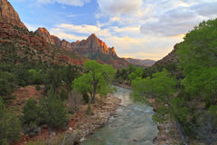 Zion Sunset and Cottonwoods Stock Images