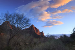 Zion Sunset. The Watchman, Zion National Park, Utah, at sunset Stock Images
