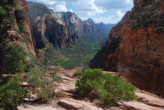 Zion,Utah, USA Royalty Free Stock Photo