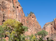 Zion Walls Stock Photo