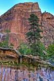 Zion Waterfall Royalty Free Stock Image