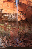 Zion Waterfall Royalty Free Stock Photography