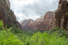 Zion from the weeping rock Stock Image