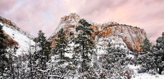 Zion Winter Royalty Free Stock Images