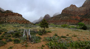 Zions Canyon with Rain Clouds Storms Stock Photo