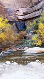 Zions. River fall beautiful royalty free stock photo
