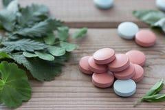 Ziołowej medycyny pojęcie, pigułki i rośliny, Obrazy Stock
