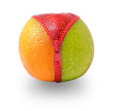 Zip fastening apple to orange Royalty Free Stock Photography
