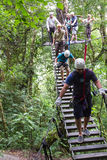Zip line canopy tours in Costa Rica Royalty Free Stock Image