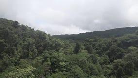Zip line zip-line extreme. pov. POV of zip line, zip-line extreme in the rainforest stock video