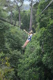 Zip line. Female tourist going down a zip line stock photos
