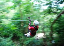 Zip Line In Jamaica Stock Photos